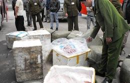 """Công an thị xã Hồng lĩnh bắt 1.000 kg nội tạng """"bẩn"""""""