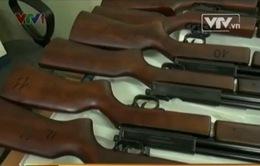 Phát hiện vụ nhập lậu súng săn số lượng lớn