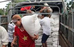 Gạo cứu trợ khẩn cấp đã về trung tâm lũ của Hà Tĩnh