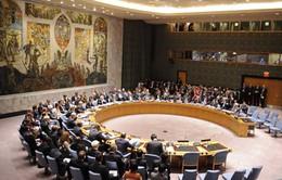 Saudi Arabia rút khỏi ghế Ủy viên Hội đồng Bảo an