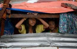 Cứu trợ 100 người Việt tại tâm bão Tacloban