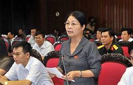 Quốc hội thảo luận Luật Hải quan (sửa đổi)