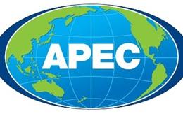 Hội thảo APEC: Mô hình tăng trưởng mới