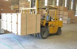 Quảng Trị: Xây dựng mới nhà máy sản xuất gỗ