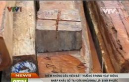 Phát hiện thêm sai phạm của công ty Bảo Ngọc Bình Phước về nhập khẩu gỗ