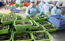 Việt Nam xuất khẩu tôm đứng thứ ba thế giới