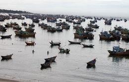 Chìm tàu tại Mũi Né: Chưa tìm thấy xác 4 ngư dân