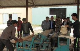 Thu hồi 26,5 tỷ đồng hỗ trợ DN tại tỉnh Điện Biên