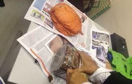 Hải quan Tân Sơn Nhất bắt giữ lượng lớn ma túy