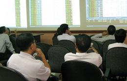 Thị trường chứng khoán phiên đầu năm tăng điểm tích cực