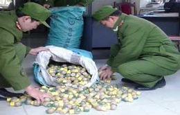 Cao Bằng: Bắt vụ vận chuyển pháo nổ số lượng lớn