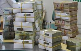 VAMC được dùng vốn để gửi ngân hàng, mua cổ phần