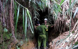 Chưa tìm thấy thi thể 3 nạn nhân vụ sập hầm vàng