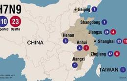 Trung Quốc: Phát hiện thêm các ca nhiễm cúm gia cầm mới