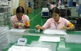Dừng hoạt động 14 DN XKLĐ sang Đài Loan