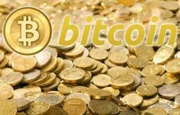 Cộng đồng Bitcoin tại Việt Nam mới chỉ là một nhóm rất nhỏ