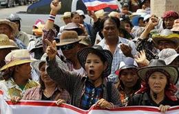 Thái Lan: Dùng quỹ dự phòng trợ giá gạo cho nông dân