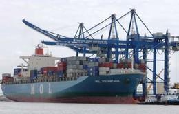 Chọn đơn vị khai thác bến cảng tổng hợp quốc tế Thị Vải