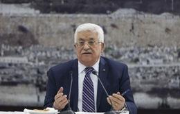 Palestine xin gia nhập các cơ quan LHQ