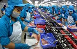 Việt Nam không phá giá cá tra, cá basa ở Hoa Kỳ
