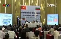 Diễn đàn doanh nghiệp Việt Nam - Bulgaria
