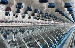 Dệt may Việt Nam lệ thuộc quá lớn vào nguồn vải nhập khẩu
