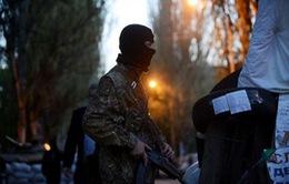 Quan sát viên OSCE bị người biểu tình bắt giữ