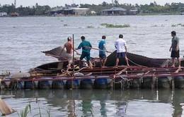 Chìm bè cá tại Vĩnh Long, 1 bé gái mất tích