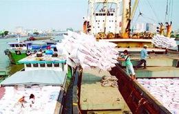 Vì sao doanh nghiệp trả chỉ tiêu xuất khẩu gạo?