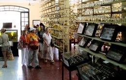Bề dày nghiên cứu về Hoàng Sa, Trường Sa: Khối tài sản khổng lồ về biển đảo