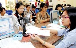 Ngành thuế TP.HCM triển khai hỗ trợ doanh nghiệp FDI