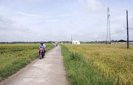 Dùng một phần phí đường bộ để làm đường nông thôn