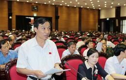 Quy định giữ đăng ký quốc tịch Việt Nam là chưa phù hợp