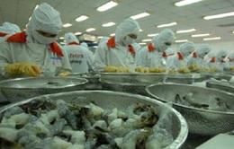Xuất khẩu tôm sang Nhật: Việt Nam dẫn đầu