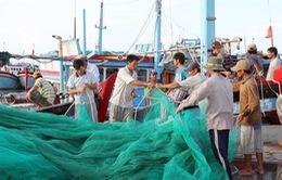 Nhiều chính sách ưu đãi chưa từng có đối với ngư dân