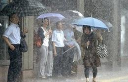 Nhật Bản nâng mức cảnh báo và sóng thần cao nhất trước bão Neoguri