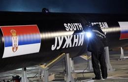 """Nga kêu gọi không chính trị hóa dự án """"Dòng chảy phương Nam"""""""