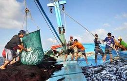 Ngư dân cần cảnh giác với những nguy cơ trên biển