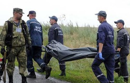 Malaysia chính thức yêu cầu bảo vệ hiện trường vụ máy bay rơi