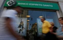 """Bồ Đào Nha sẽ """"bơm"""" 4,9 tỷ euro giải cứu ngân hàng BES"""