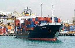 Bộ GTVT cùng DN vận tải biển bàn cách gỡ khó