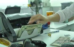NHNN hướng dẫn sử dụng tài khoản ngoại tệ