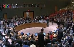 Hội đồng Bảo an LHQ họp khẩn về tình hình Iraq