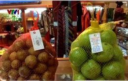 Tổng rà soát nguồn gốc hoa quả tại Sân bay Nội Bài