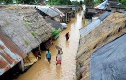 Lũ lụt kinh hoàng tại miền Đông Ấn Độ