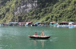 Tuần lễ bảo vệ môi trường vịnh Hạ Long