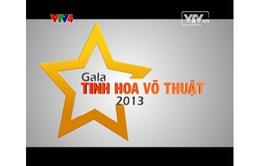 Hỏi & đáp VTV Online: Xem lại Gala Tinh hoa võ thuật