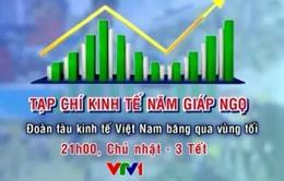 Tạp chí kinh tế cuối năm: Đoàn tàu kinh tế VN băng qua vùng tối (21h, mùng 3 Tết, VTV1)