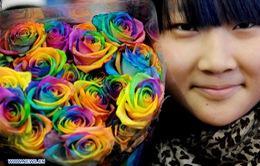 Trung Quốc: Đóa hồng 999 bông giá 70 triệu đồng