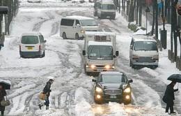 Chùm ảnh bão tuyết hoành hành ở Nhật Bản